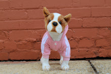 Load image into Gallery viewer, [Premium Quality Unique Dog Dresses & Apparel Online]-Pawtique Pet Boutique