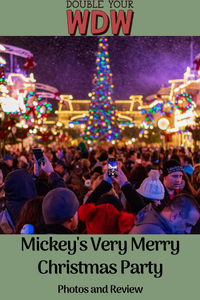 2019 Mickey's Very Merry Christmas Party Review and Photos