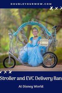 Stroller and EVC Delivery Ban at Disney World