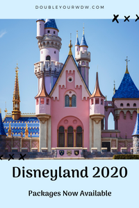 Disneyland Packages Available Now