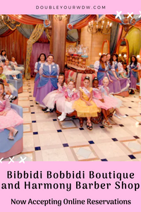 Bibbidi Bobbidi Boutique, Harmony Barber Shop, Pirates League Now Taking Online Appointments