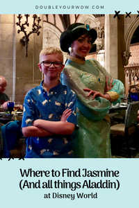 Where to Find Aladdin and Jasmine at Disney World