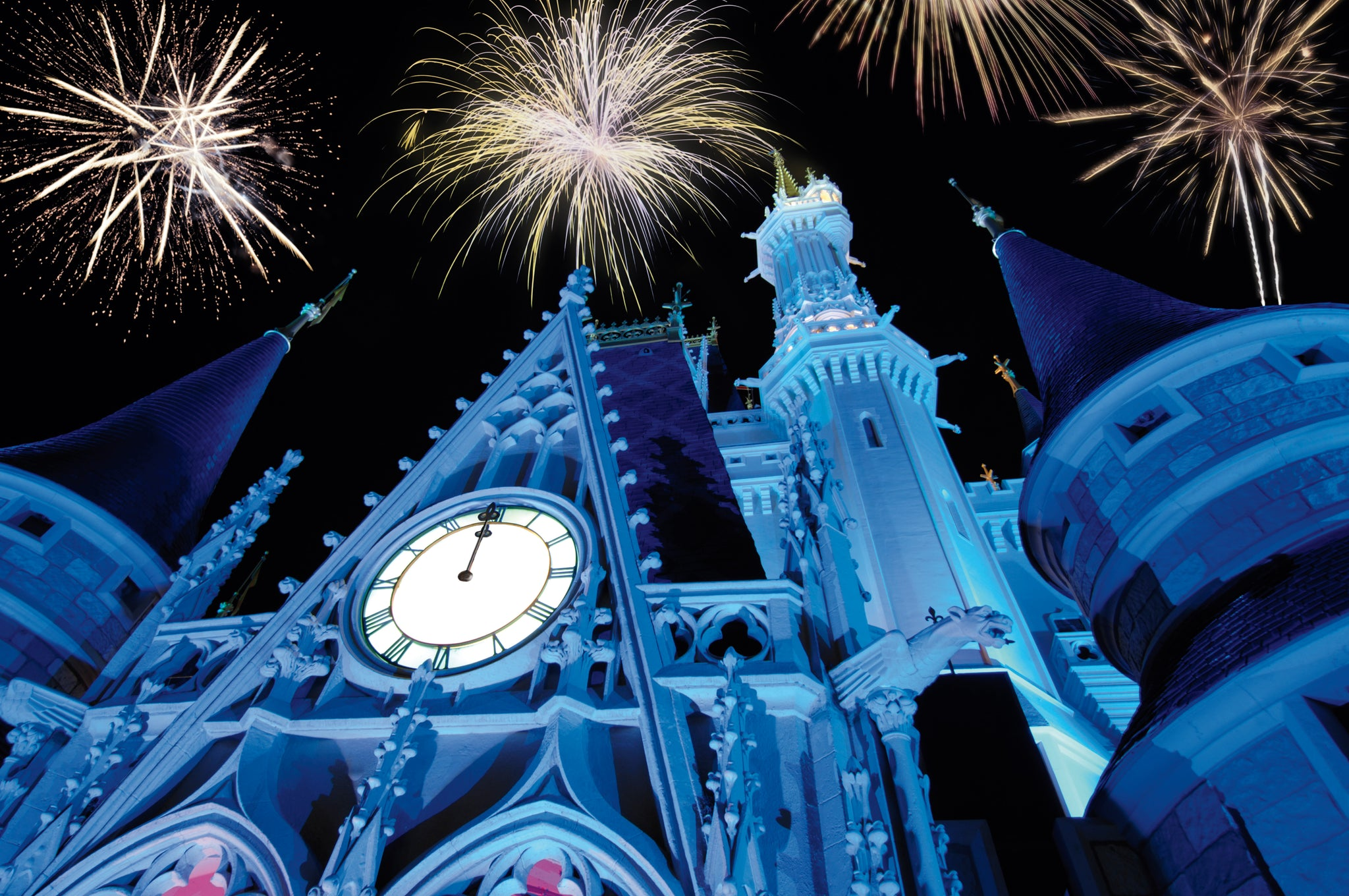 Magic Kingdom Fireworks for New Years Eve