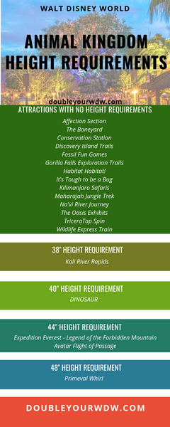 Animal Kingdom ride list height requirement
