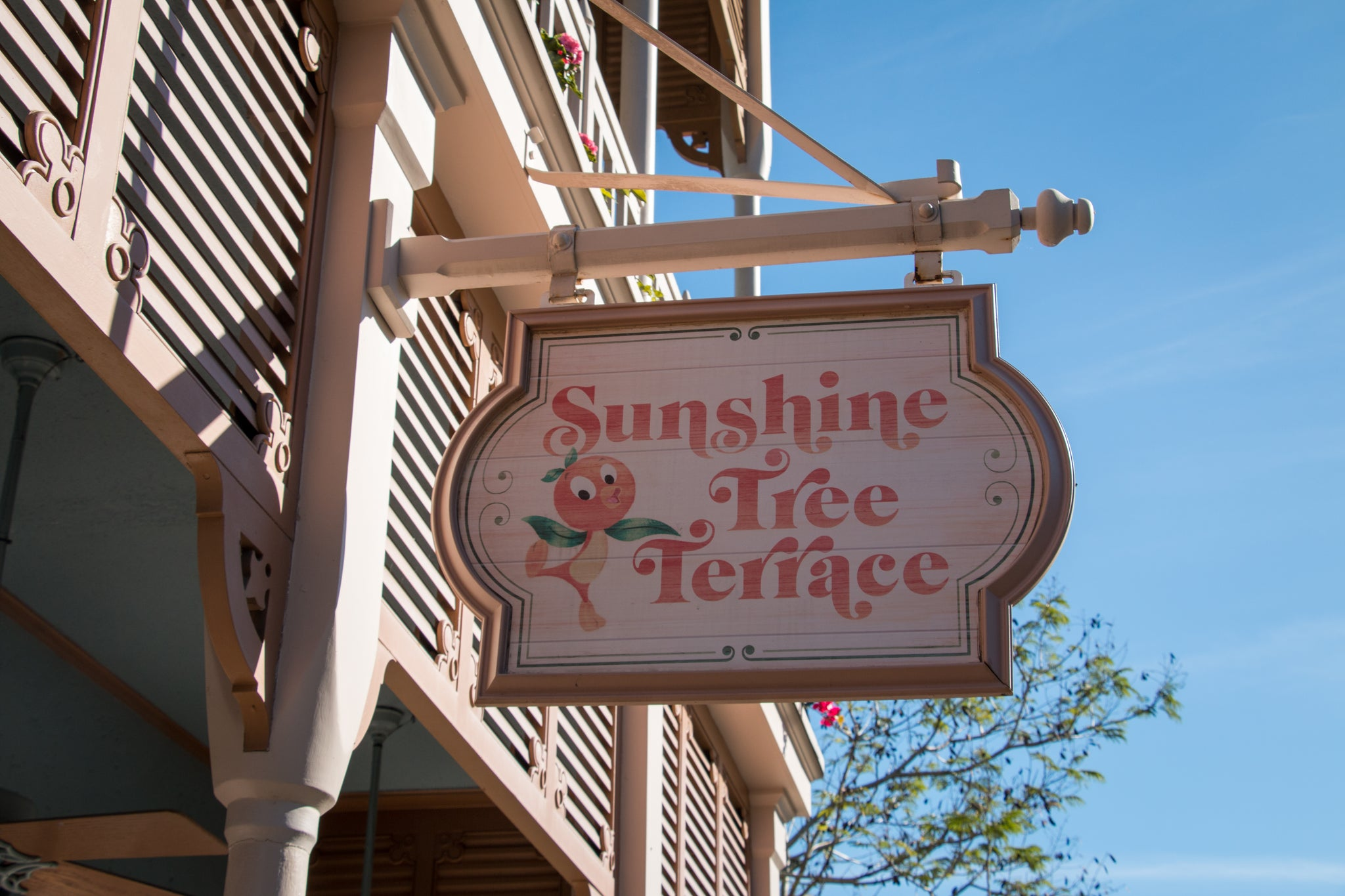 Sunshine Tree Terrace Magic Kingdom
