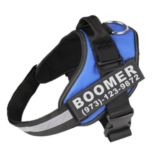 Lifetime Warranty Personalized  NO PULL Harness