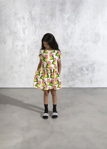 Whimsy Budgie Dress