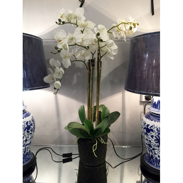 White Real Touch Orchid