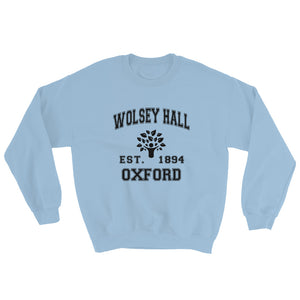 Light Blue Sweatshirt