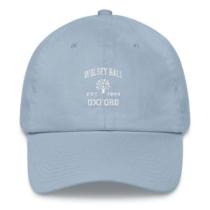 Light Blue Baseball Cap