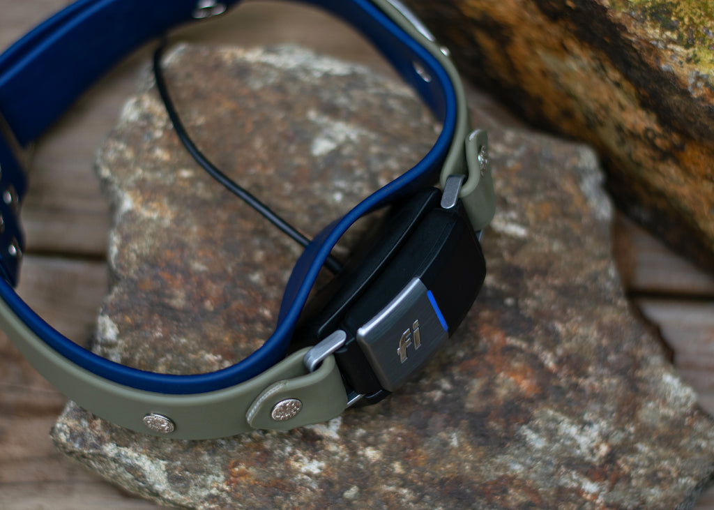"Lakeside 1.5"" Limited Slip Martingale For Fi GPS Trackers"