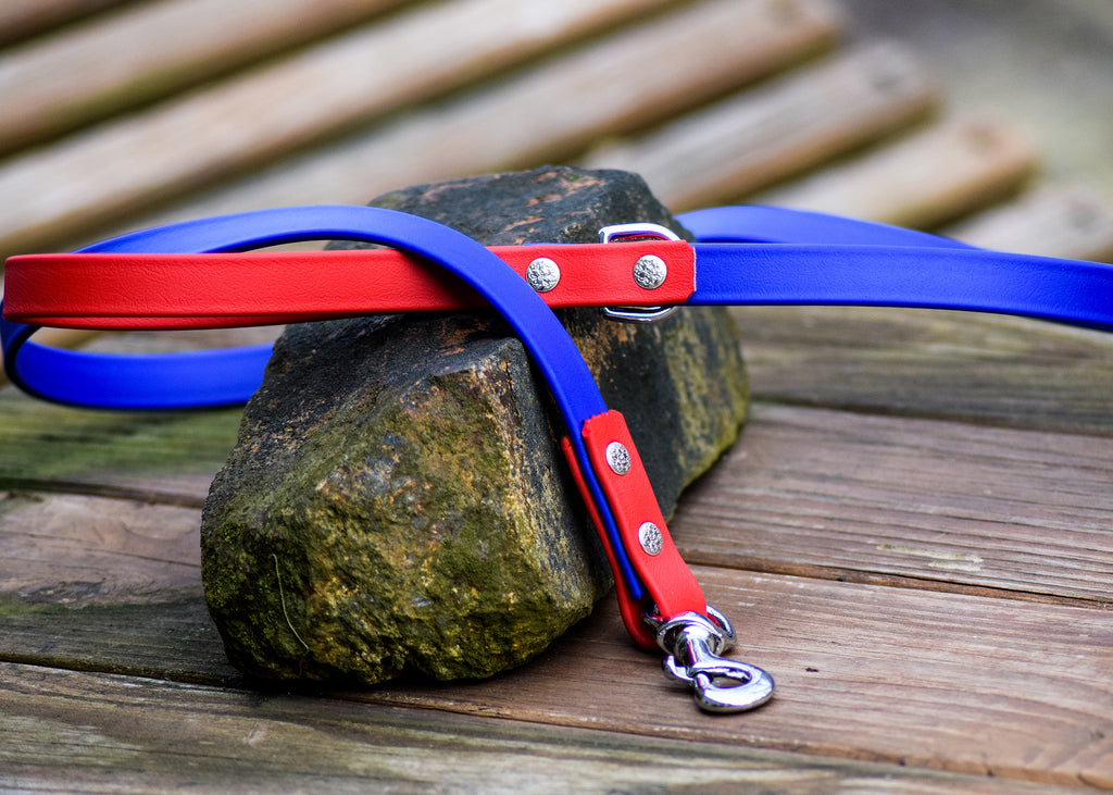 Adirondack Two-Tone Biothane Leash