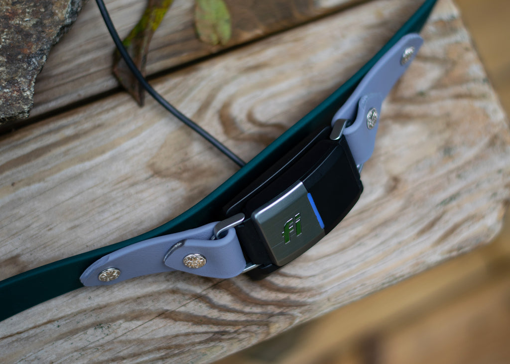 "Lakeside 1"" Buckle Collar For Fi GPS Trackers"