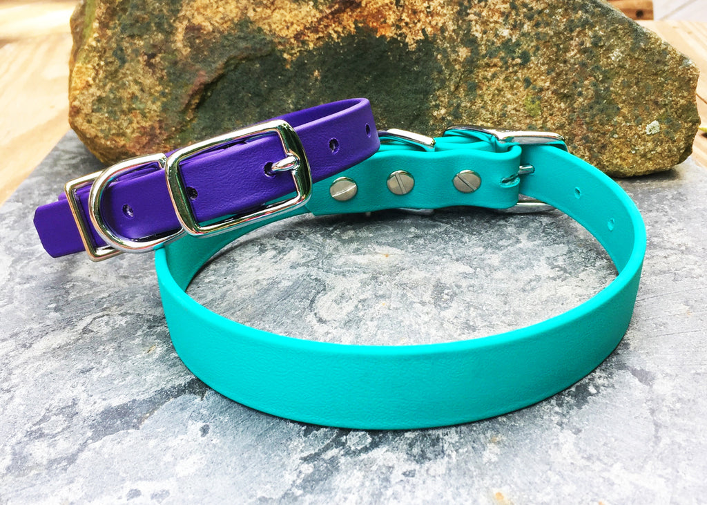 BioThane® Buckle Dog Collars