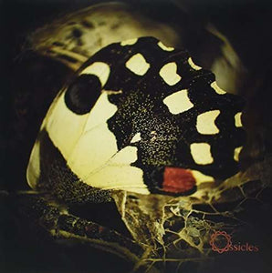 Ossicles - Music For Wastelands LP