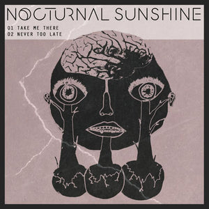 "Nocturnal Sunshine - Take Me There NEW 12"" EP"