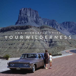 Pineapple Thief The - Your Wilderness - LP