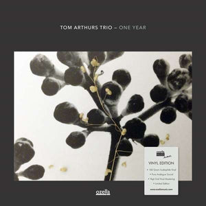 Arthurs Tom/trio - One Year LP