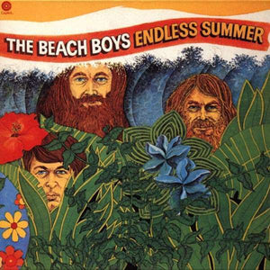 The Beach Boys - Endless Summer LP
