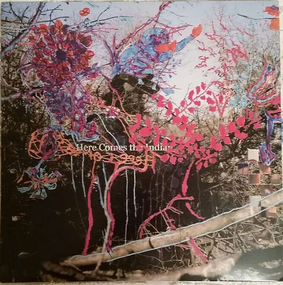 Animal Collective - Here Comes The Indian LP