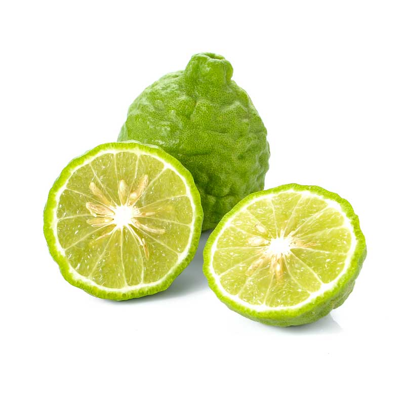 Bergamot Pure Essential Oil