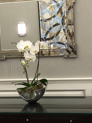Orchid Display for Boston Corporate Lobby