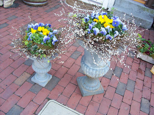 Garden Urns with Pansies for Spring