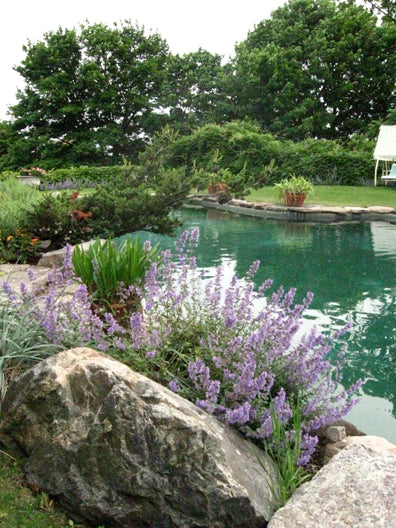 Poolside Landscaping in Swampscott MA