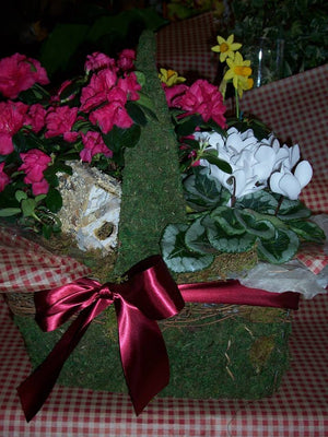 Winter Basket Garden