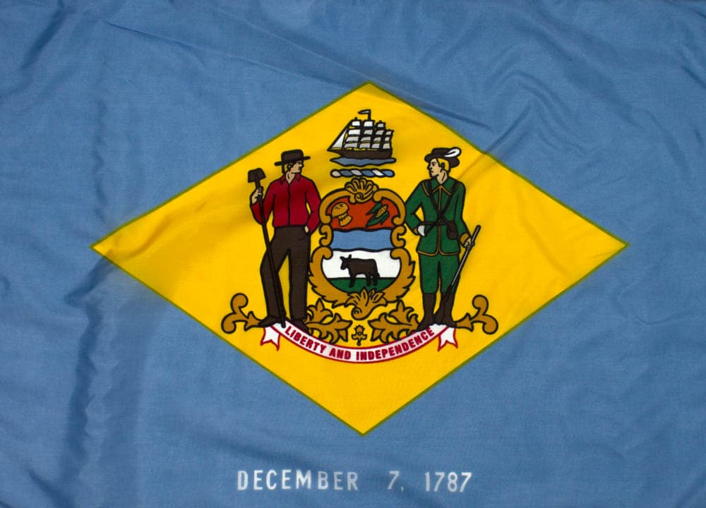 5x8ft  Delaware Flag (Popular Size)
