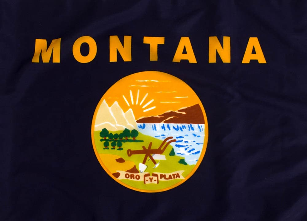 The State Flag of Montana