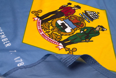 Delaware Flag Close Up