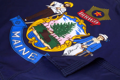 Maine Flag Close Up