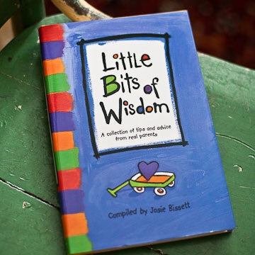 LITTLE BITS OF WISDOM - Book