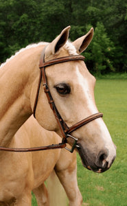 Imperial Bridle by ADT