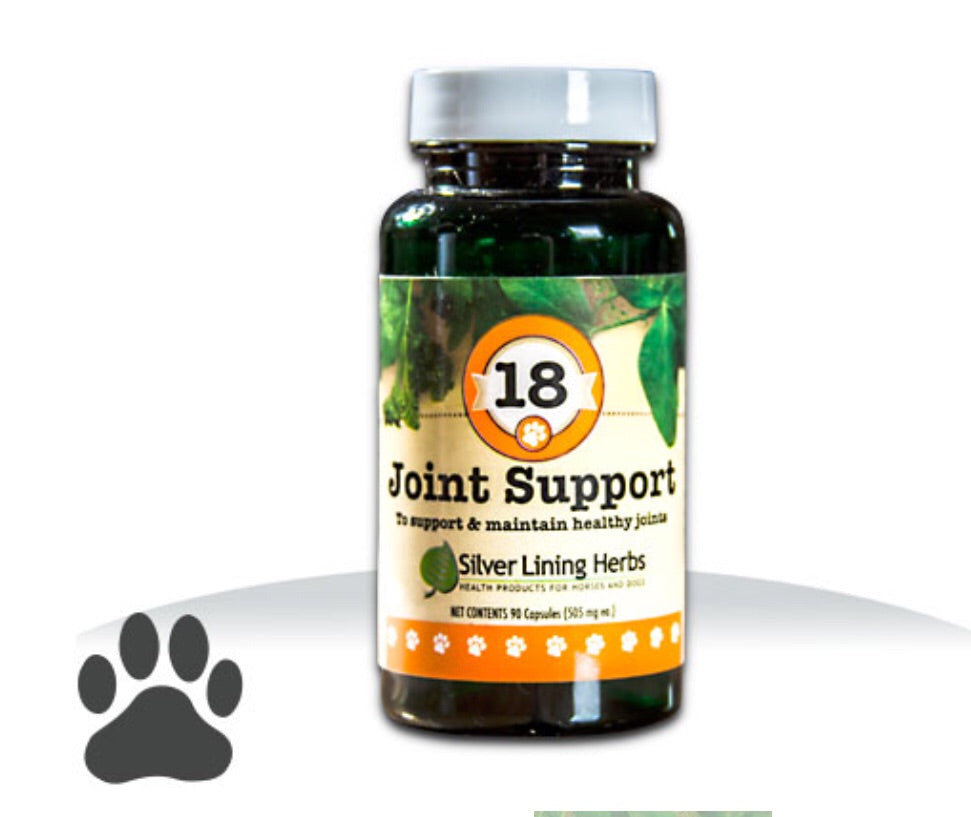 Canine Joint Support