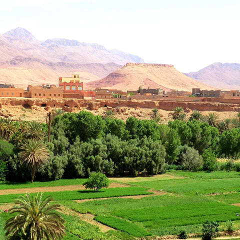 14 days in morocco