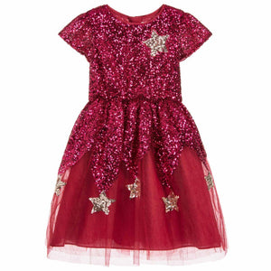 Wild and Gorgeous Star Wonder Sequin Dress in Pink