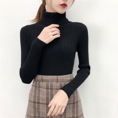 Casual Sweater Solid Turtleneck Pullover