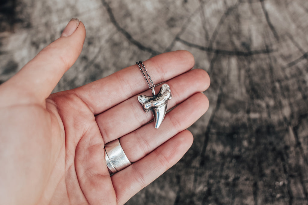 Large Otodus Sharks Tooth Necklace