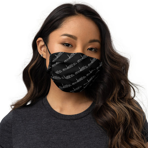 Skyline Apparel Premium face mask with Toronto Skyline Graphic - Black - Reusable Face Covering