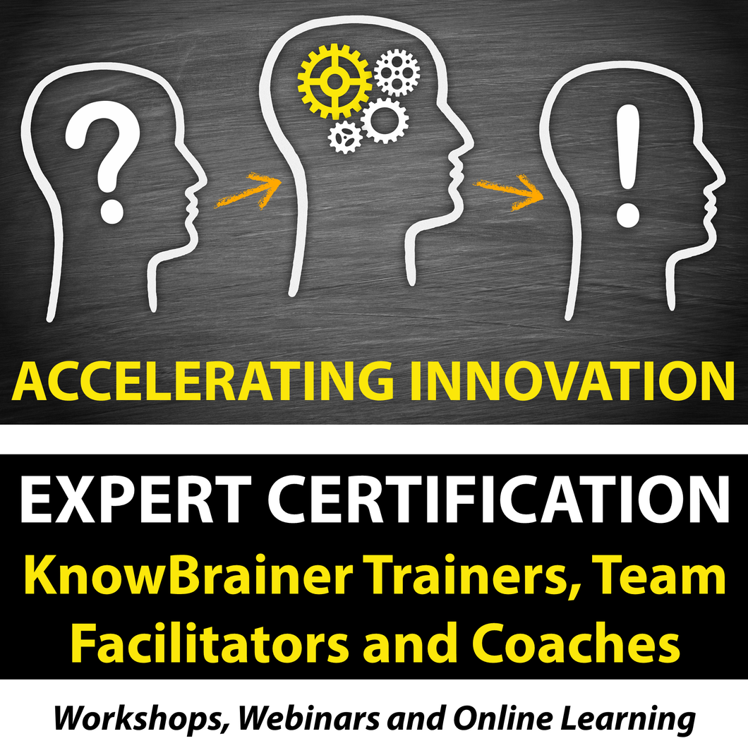 Expert Certification Workshop for KnowBrainer Trainers, Innovation Team Facilitators and Coaches