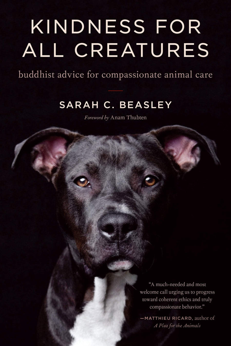 Kindness for All Creatures : Buddhist Advice for Compassionate Animal Care - The Reading Nook