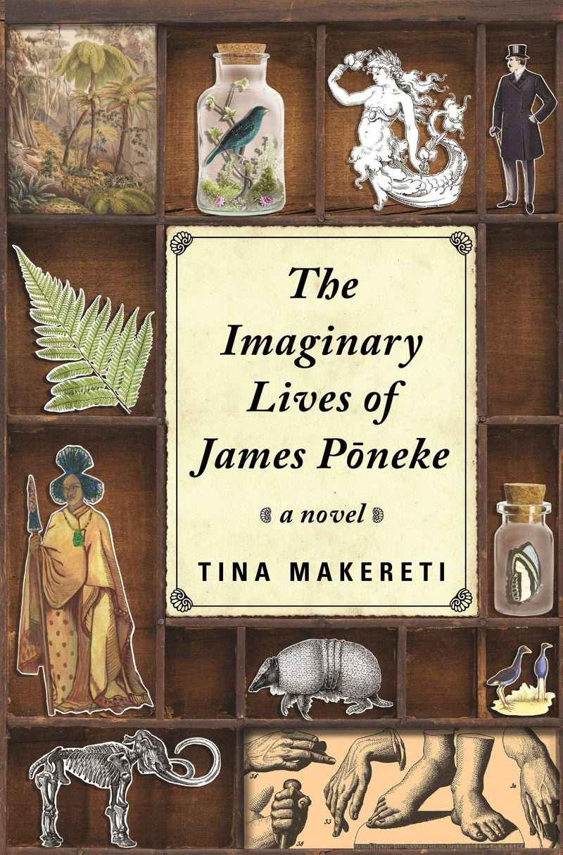 Imaginary Lives of James Poneke, The - The Reading Nook