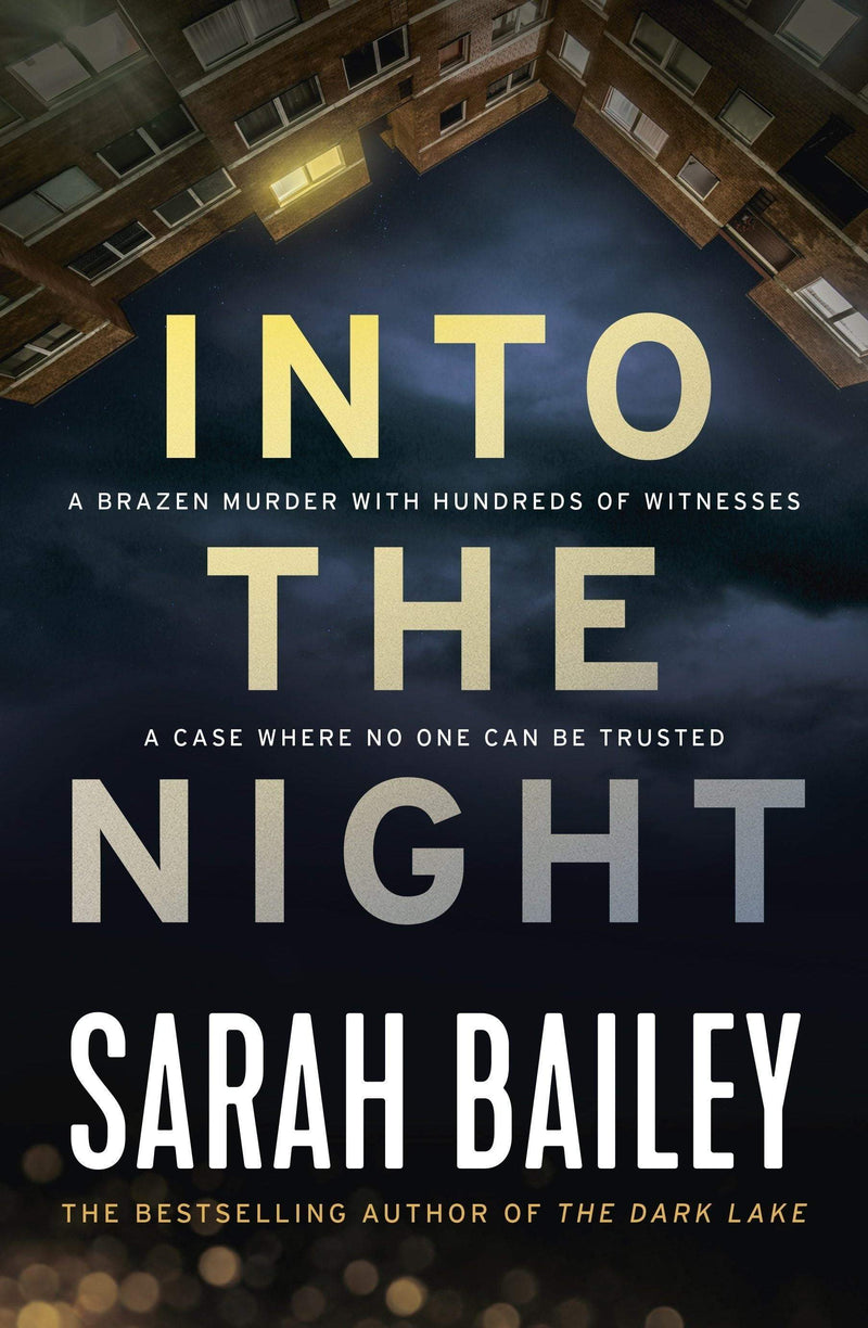Into the Night Paperback / softback