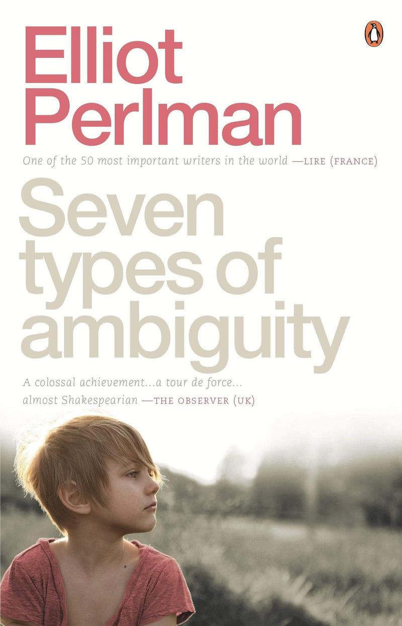 Seven Types of Ambiguity Paperback / softback