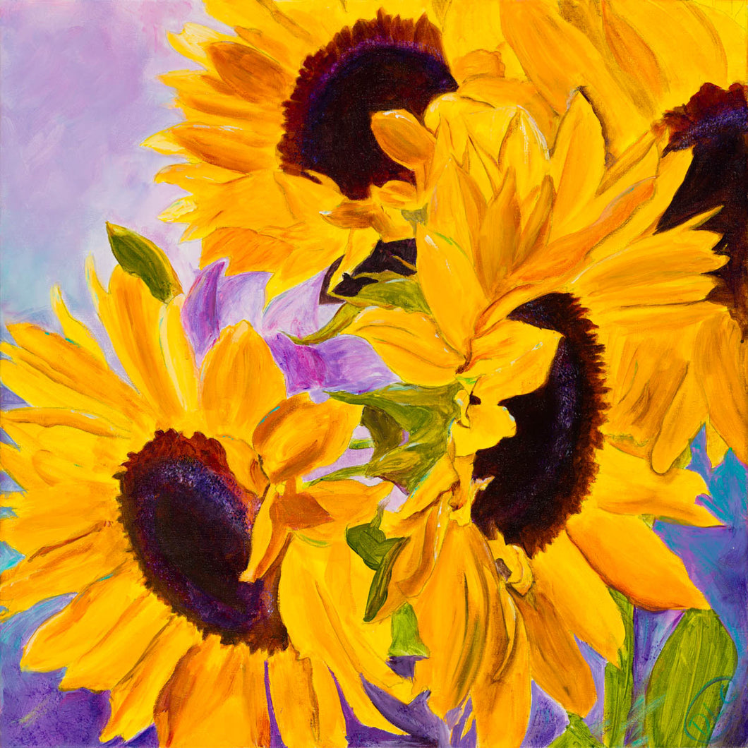 20 Sunflowers - Print