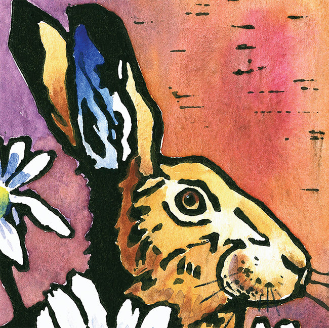 Hare and Daisies Greeting Card and Gift by Dan and Rosemary Powell
