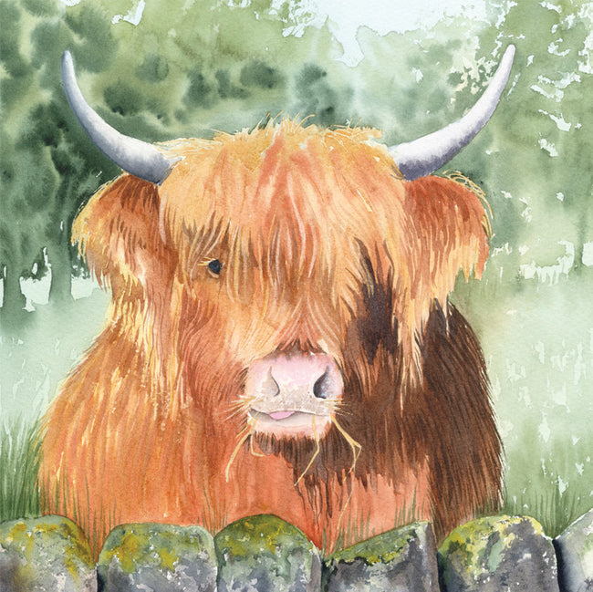 Hamish Greeting Card and Gift by Denise Schoenberg
