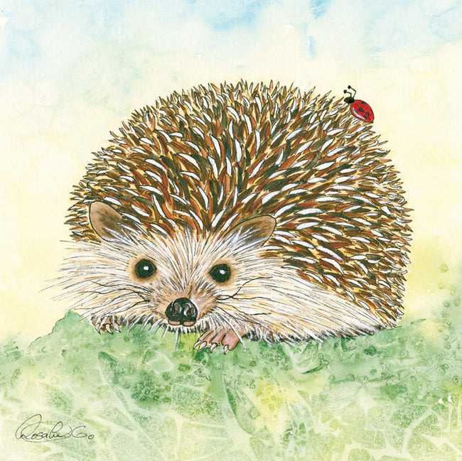 Hetty Greeting Card and Gift by Rosalie Osborne Gibb